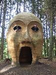 giant_head